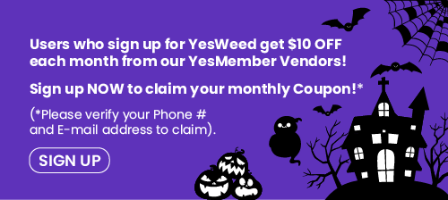 Sign Up NOW To Get $10 OFF
